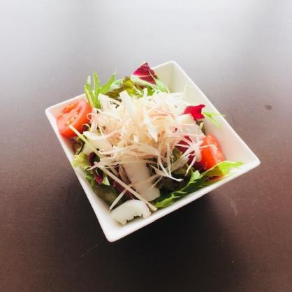 イカと水菜のサラダオニオンドレッシング